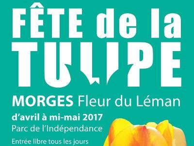 parc tulipe amsterdam